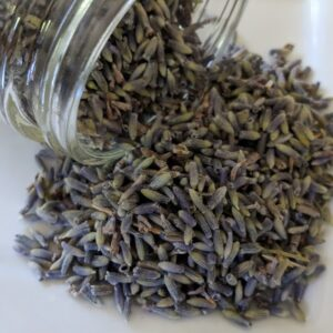 Lavender ~ Certified Organic