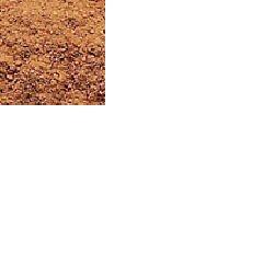Cinnamon---Cassia.jpg